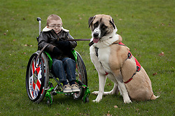 © Licensed to London News Pictures. 21/02/2013. London, UK. Owen Hopkins (7) is seen with Haatchi, a three legged former stray Anatolian shepherd dog, who helped him over come his fears despite suffering from schwartz jampel syndome (a genetic condition that causes his muscles to be permanently tense), at the photocall for the finalists of the 'Friends for Life' competition in London today (21/02/2013). The Kennel Club's 'Friends for Life' competition, which has been running since 2006, celebrates heart-warming stories of friendship in adversity, the dog that the public votes as the winner will be presented with a trophy in the main arena during Crufts at the Birmingham NEC on the 10th March. Photo credit: Matt Cetti-Roberts/LNP