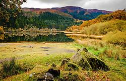 Loch Chon, Loch Lomond &amp; The Trossachs National Park, Scotland<br /> <br /> (c) Andrew Wilson | Edinburgh Elite media