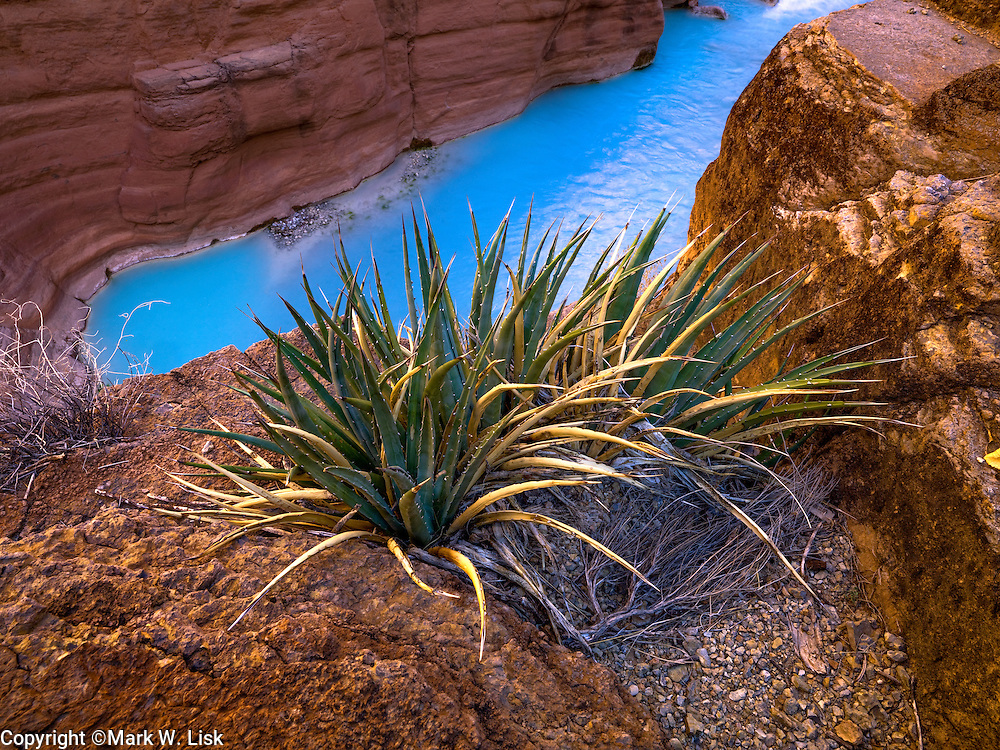 The azure blue waters of Havasu creek contrast the warm walls of the canyon, making a popular hike in Grand Canyon National Park.