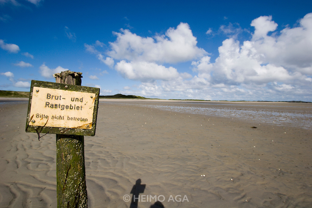The Wattenmeer near Ho?rnum. Protected breeding and resting area for birds.