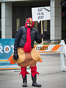 28 NOVEMBER 2019 - DES MOINES, IOWA: A man dressed as a turkey at the end of the Turkey Trot. The Turkey Trot is an annual Des Moines Thanksgiving Day 5 mile fun run.                   PHOTO BY JACK KURTZ