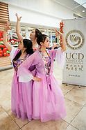UCD Confucius Institute17 GSC