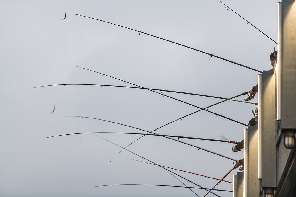 Fishing rods hanging over side of Galata Bridge against overcast sky, Istanbul, Turkey