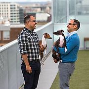 WASHINGTON, DC - OCT07: Twin brothers Greg and Dennis Lacot (L-R), play with their Italian greyhound dogs Giada and Gemma, also siblings, at the rooftop dog park at City Market at O Street apartments where the brothers share an apartment, October 7, 2016, in Washington, DC. As new apartment buildings continue sprouting around downtown DC, developers know that a large percentage of renters in the city have dogs and make their choices of buildings based largely on pet-friendliness. So they go out of their way to be welcoming to dogs.  (Photo by Evelyn Hockstein/For The Washington Post)