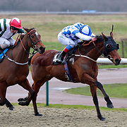 Lingfield 22nd January