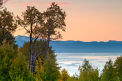 """Aspens Above Lake Tahoe 6"" - Photograph of Autumn colored Aspens above Lake Tahoe, shot at sunrise."