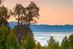 """Aspens Above Lake Tahoe 6"" - Photograph of Autumn colored Aspens above Lake Tahoe, shot at sunrise."
