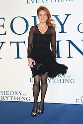 © Licensed to London News Pictures. 09/12/2014, UK. Sarah Ferguson, Eddie Redmayne, The Theory of Everything - UK film premiere, Leicester Square, London UK, 09 December 2014. Photo credit : Richard Goldschmidt/Piqtured/LNP
