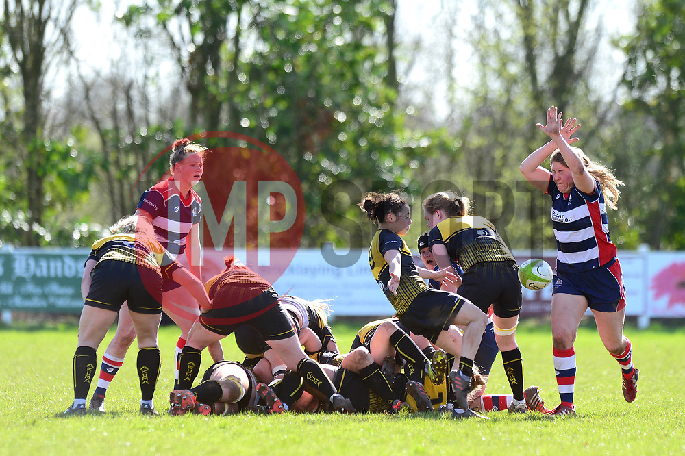 Poppy Cleall of Bristol Ladies attempts to block the clearance from Sammy Wong of Wasps Ladies - Mandatory by-line: Dougie Allward/JMP - 26/03/2017 - RUGBY - Cleve RFC - Bristol, England - Bristol Ladies v Wasps Ladies - RFU Women's Premiership