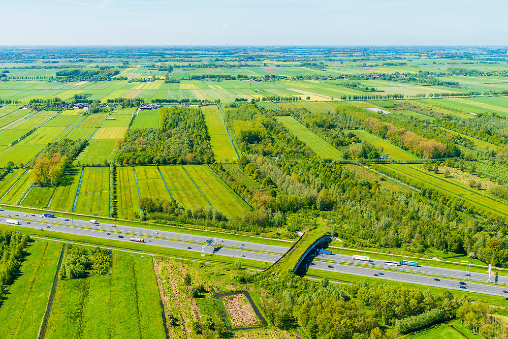 Nederland, Utrecht, Gemeente Vijfheerenlanden, 13-05-2019; Ecoduct Autena over de A2, ten zuiden van knooppunt Everdingen. Ook bekend als Ecoduct Autenase Kade<br /> Ecoduct motorway A2.<br /> luchtfoto (toeslag op standard tarieven);<br /> aerial photo (additional fee required);<br /> copyright foto/photo Siebe Swar