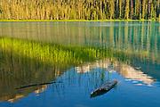 Lower Joffre Lake<br />Joffre Lakes Provincial Park<br />British Columbia<br />Canada