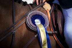 First place ribbon<br /> Prizegiving Grand Prix of Lummen<br /> CSIO Lummen 2013<br /> © Dirk Caremans