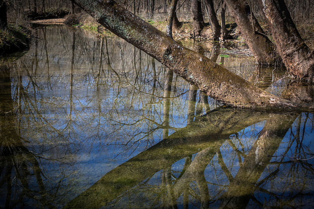 Reflections on a winter afternoon along Crane Creek.