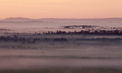 © Licensed to London News Pictures. 19/11/2017. Ditcheat, UK.  Sunrise over a misty Ditcheat. Photo credit: Jason Bryant/LNP
