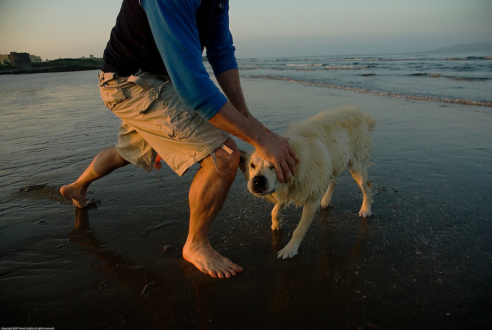 A dog shakes itself after a swim in the Irish sea at Donabate beach, Co. Dublin, Ireland.