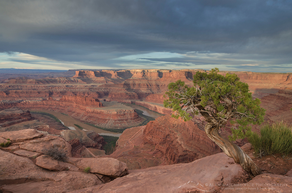 Colorado River seen from Dead Horse Point State Park, Utah