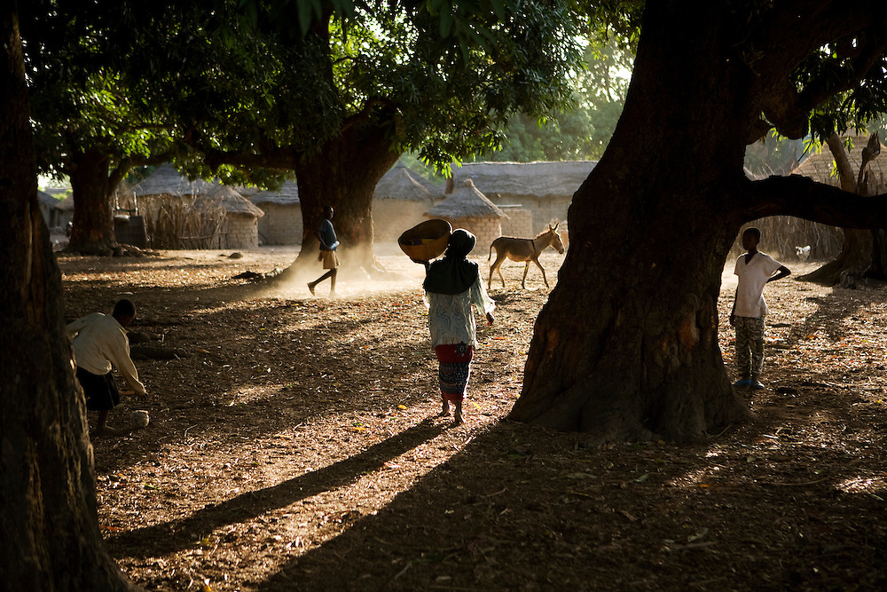 late afternoon in the village. Morola, Mali.