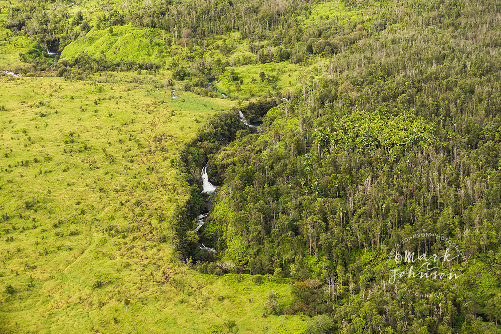 Aerial photo of waterfalls, Hilo Watershed Forest Reserve, Big Island, Hawaii