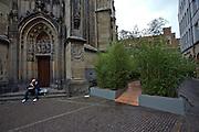 Skulptur Projekte Muenster 4. Arftificial path through a bamboo forest next to Lamberti Church.