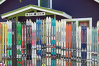 Ski fence, Glacier Washington