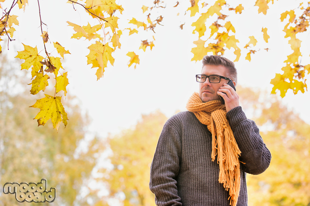 Portrait of mature attractive man talking on smartphone under maple tree in park