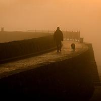 A man walks his dog on a foggy evening, Barry Island, Wales