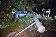 Auckland-Aston Martin sports car loses to lamppost