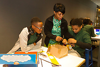 The 2018 Black Creativity program at the Museum of Science and Industry continued its month-long program Thursday afternoon, February 1st, 2018 with a class on developing new ideas and making those ideas a reality. Grammar school students from the House of Excellence school were encouraged to come up with ideas for necessary practical things and then develop and build models of those things.<br /> <br /> 4397 &ndash; House of Excellence School staff member Selena Leavy helps Demetrius Johnson and Jamir Coleman develop their ideas.<br /> <br /> Please 'Like' &quot;Spencer Bibbs Photography&quot; on Facebook.<br /> <br /> Please leave a review for Spencer Bibbs Photography on Yelp.<br /> <br /> All rights to this photo are owned by Spencer Bibbs of Spencer Bibbs Photography and may only be used in any way shape or form, whole or in part with written permission by the owner of the photo, Spencer Bibbs.<br /> <br /> For all of your photography needs, please contact Spencer Bibbs at 773-895-4744. I can also be reached in the following ways:<br /> <br /> Website &ndash; www.spbdigitalconcepts.photoshelter.com<br /> <br /> Text - Text &ldquo;Spencer Bibbs&rdquo; to 72727<br /> <br /> Email &ndash; spencerbibbsphotography@yahoo.com