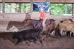 September 24, 2017 - Minshall Farm Cutting 6, held at Minshall Farms, Hillsburgh Ontario. The event was put on by the Ontario Cutting Horse Association. Riding in the 250 Limited Rider Class is Lynne Purdie on Timothy Taz owned by the rider.