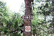 The Dinosaur Park outside of Austin Texas in June 2010.