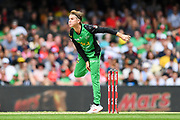 17th February 2019, Marvel Stadium, Melbourne, Australia; Australian Big Bash Cricket League Final, Melbourne Renegades versus Melbourne Stars; Adam Zampa of the Melbourne Stars bowls