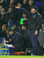 Photo: Tom Dulat.<br /> Tottenham Hotspur v Getafe. UEFA Cup. 25/10/2007.<br /> Manager of Tottenham Martin Jol during the game