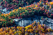 Colorful autumn foliage on a steep mountainside, White Mountains National Forest, New Hampshire, USA.