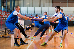 Matej Gaber on psychophysical tests at Faculty of Sports before tomorrow's handball match between the national teams of Slovenia and Croatia, on October 17, 2017 in Faculty of Sports, Ljubljana, Slovenia. Photo by Urban Urbanc / Sportida