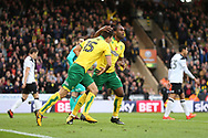 Timm Klose of Norwich retrieves the ball out of the net after scoring his sides 1st goal during the Sky Bet Championship match at Carrow Road, Norwich<br /> Picture by Paul Chesterton/Focus Images Ltd +44 7904 640267<br /> 28/10/2017