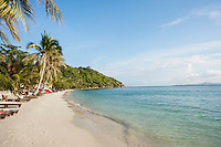 Beach and palm trees on Koh Pha Ngan; Thailand