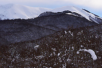 Beech forests in snow, Central Apennines, Italy