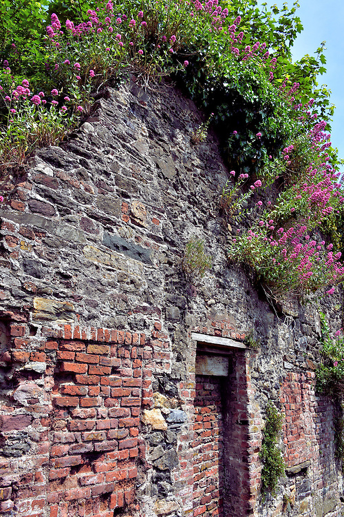 Old Stone Home on Little Michael Street in Waterford, Ireland <br />