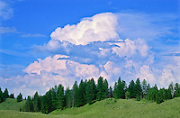 Cumulus congestus cloud formation over the Grand Teton National Park, Wyoming.