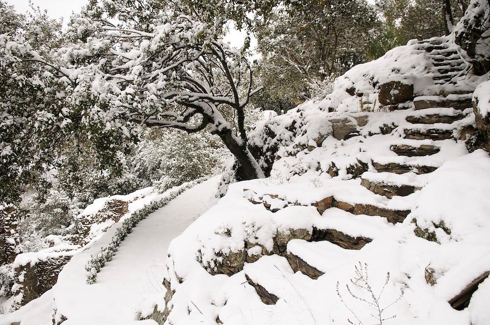 France, Languedoc Roussillon, Gard, Cévennes, hiver