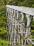 Historic Percy Burn Viaduct (36 meters high and 124 meters long) was built for a logging tramway in 1923 and now attracts trampers (hikers) on the Tuatapere Hump Ridge Track, in Fiordland National Park, South Island, New Zealand. Due to lack of sturdy structural lumber from native New Zealand forests, the viaduct was built from Australian hardwood, to support logging trains. In 1990, UNESCO honored Te Wahipounamu - South West New Zealand as a World Heritage Area.