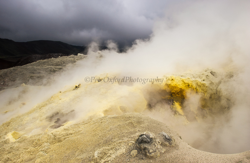Mina de Azufre (Sulphur fulmeroles)<br /> inside crater of Sierra Negrá Volcano (second largest volcanic crater in the world)<br /> Isabela Island<br /> Galapagos Islands<br /> ECUADOR.  South America