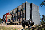 Exterior photograph of the Mekane Yesus Seminary Dining Hall on the campus in Addis Ababa, Ethiopia, on Tuesday, Nov. 11, 2014. LCMS Communications/Erik M. Lunsford