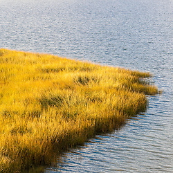 Detail of the salt marsh behind Coast Guard Beach in the Cape Cod National Seashore in Eastham, Massachusetts.