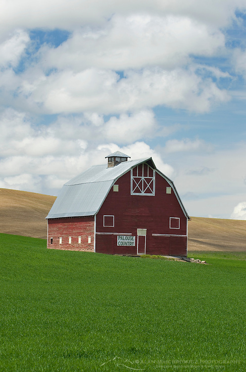 Classic red barn amidst green fields of wheat in the Plause region of Washington State