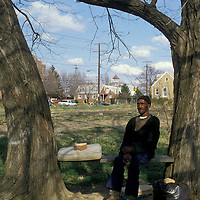 An elderly man sits on a bench under an Alexandria, VA tree in 1988