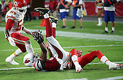 Arizona Cardinals wide receiver Travis Harvey (19) goes upside down on the grass after catching a fourth quarter touchdown pass that cuts the Kansas City Chiefs lead to 34-19 while Kansas City Chiefs linebacker Dezman Moses (54) looks on during the 2015 NFL preseason football game against the Kansas City Chiefs on Saturday, Aug. 15, 2015 in Glendale, Ariz. The Chiefs won the game 34-19. (©Paul Anthony Spinelli)