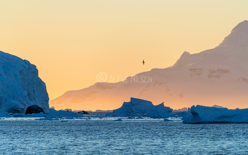 Sunset at Georges Point, Ronge Island, Antarctica