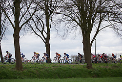 Stage 4 of the Healthy Ageing Tour - a 126.6 km road race, starting and finishing in Finsterwolde on April 8, 2017, in Groeningen, Netherlands.