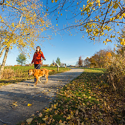 A woman walks her dog at Payson Park in Portland, Maine.